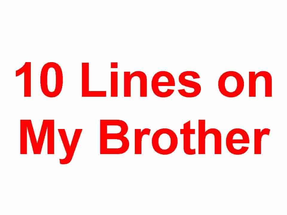 10 Lines on My Brother