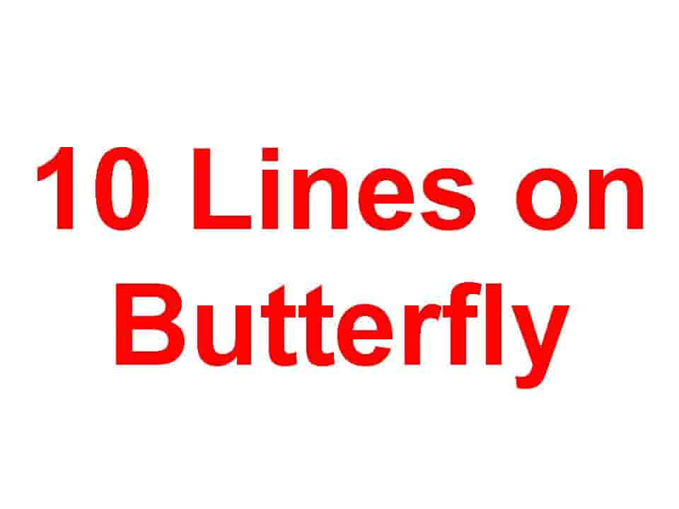 10 Lines on Butterfly