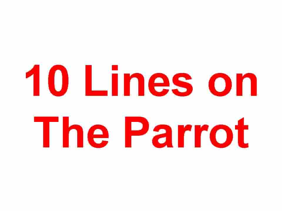 10 Lines on Parrot