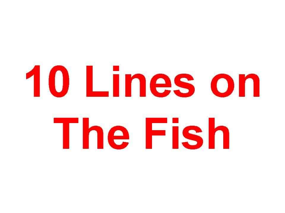 10 lines on Fish