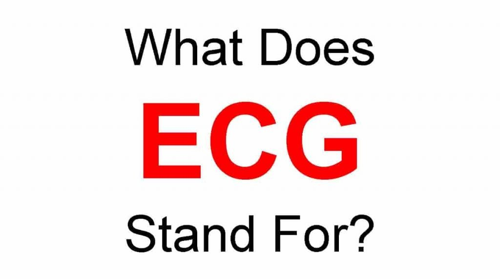 ECG Full Form – What Does ECG Stand For
