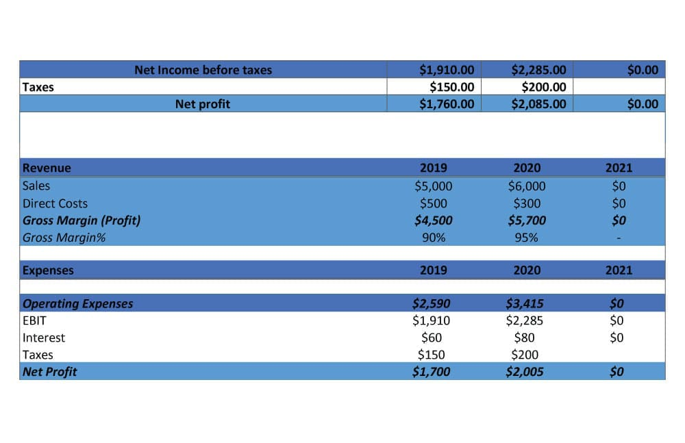 Pro forma Income Statement Example 2