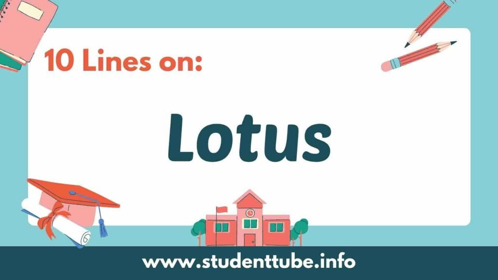 10 Lines on Lotus in English